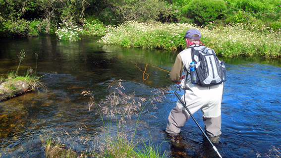 Learn how to Fly Fish on the river for FREE!